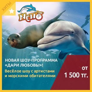 Новая шоу-программа «Дари Любовь!»! Весёлое шоу с артистами и морскими обитателями в алматинском дельфинарии Nemo со скидкой до 52%!