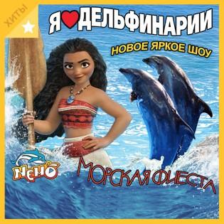 Посетите новое шоу «Морская фиеста» с дельфинами, морскими котиками и морской львицей с 20 октября по 5 ноября! Посещение дельфинария Nemo со скидкой 20%!